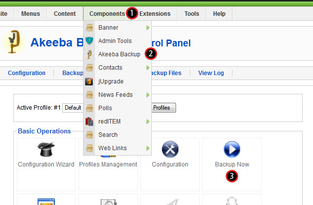 JUpgrade Page 2 - Akeeba Backup step 1.jpg
